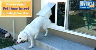 patio doggie door insert sliding glass pet door insert reviews limited dog home depot sliding patio