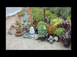 Small Picture succulent garden design YouTube