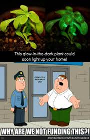 Glowing Memes. Best Collection of Funny Glowing Pictures via Relatably.com
