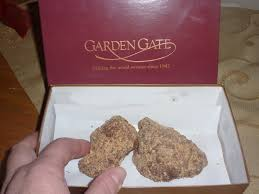 a year ago my son introduced me to garden gate english toffee and i am hooked