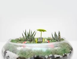 diy palm springs inspired succulent terrarium diy palm springs inspired succulent terrarium
