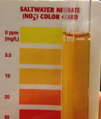 This Drives Me Crazy Api Nitrate Color Chart Reef