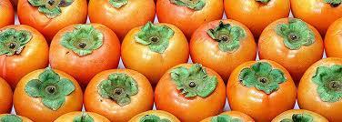 Resultado de imagem para caqui fruta