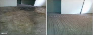 Image result for Cypress rug cleaning