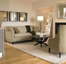 choosing the right area rug for your living room best of choosing a rug color