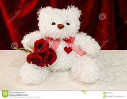 white teddy bears with hearts and roses. Fine White White Teddy Bear With Red Roses Throughout Teddy Bears With Hearts And Roses E
