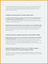 Personal Value Statement Examples Interesting Sample Resume Summary Statements A Resume Summary Examples Examples
