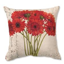 Indoor Outdoor Pillows Home Design Ideas and