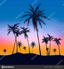 palm trees tumblr. Summer Palm Trees Tumblr \u2014 Stock Vector