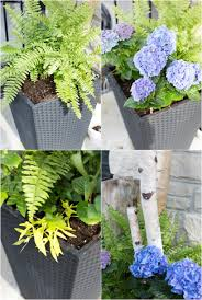 how to plant a planter