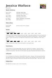 Sales Representative Resume Examples Outside Sales Resume samples VisualCV resume samples database 73