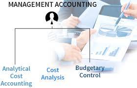 management accounting assignment help and project topics