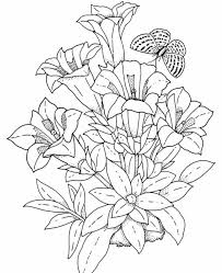 Small Picture Flowers And Butterflies Coloring Pages Of Flowers And Butterflies