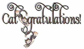 Image result for cat congratulation images
