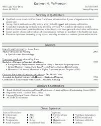 Superb Professional Summary For Resume 15 Professional Summary For .