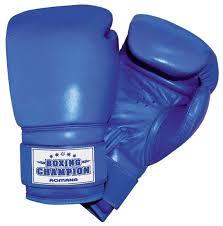 Боксерские <b>перчатки ROMANA</b> ДМФ-МК-01.70 — купить по ...