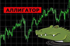Индикаторы для бинарных опционов аллигатор