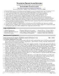 Hyperion Administrator Sample Resume Templates Best Solutions Of Database Engineer Sample Resume Uxhandy 12