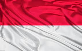 4 Sektor/Bidang Yang Seharusnya Dikuasai Indonesia