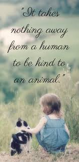 Beautiful Animal Quotes Best Of For Animal People Pinterest Animal Dog And Cat