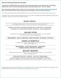 Merchandiser Job Description Resume – Rapidresultsresumes.net