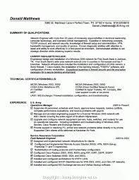 Information Technology Resumemple Consultant Cv Example