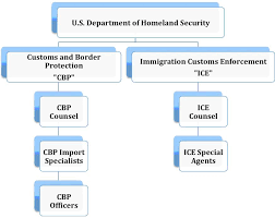 Cbp Pay Chart Understanding The U S Border Archaeologists Law