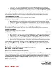 Professional Resume Summary Professional Resume Summary Emberskyme 10