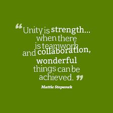 Mattie Stepanek Quote About Team Work