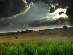 background images nature dark. Unique Images Download Cool Hd Dark Nature And Field Background For Background Images Nature Dark E