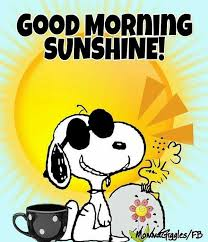Good Morning Monday Photos In Funny 24 Funny Good Morning Memes 5