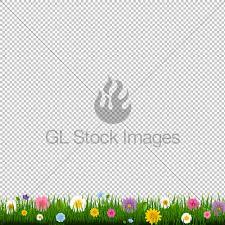 grass transparent background. Grass And Border Transparent Background With Gr.. Grass Transparent Background D