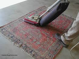 this sarouk rug is being dusted on the back side to help shake out soil to