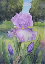 ukrainian artist yulia bright watercolor paintings watercolor irises painting colors flower