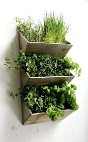 shabby chic large wall hanging herbs planter kit wooden kitchen garden indoor wood working herb planters wall planters