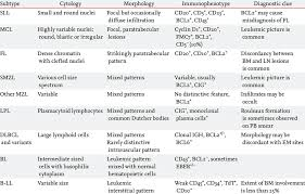 B Cell Non Hodgkin Lymphomas In The Bone Marrow Download Table