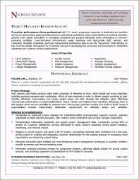 Sample Resume Construction Project Manager It Director Resume Beautiful Construction Project Manager