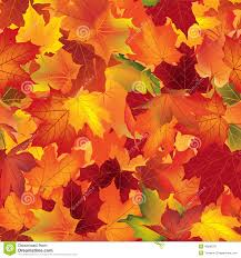Fall Leaf Pattern Custom Autumn Texture Fall Pattern Wallpaper With Maple Leaves Stock