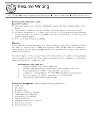 Resume Objective Section Sample Writing A Objective For A Resume Objective On Resume Samples Best ...