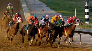 Image result for horse race track