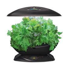 Kitchen Herb Garden Kit Amazoncom Miracle Gro Aerogarden 7 With Gourmet Herb Seed Kit