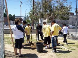 youth job training and mentoring los angeles beautification team media gallery