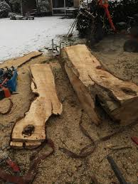 ran my alaskan sawmill for the first time yesterday some beautiful chestnut boards ready to dry