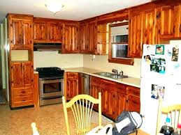 Average Cost To Reface Kitchen Cabinets Best Kitchen Cabinet Refinishing Costs Cost With Refacing Inspirations