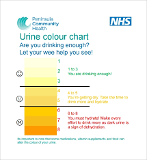 9 Sample Urine Color Charts Pdf