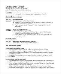 Work Resumes Examples Musiccityspiritsandcocktail Com