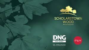 Dng Design Dng Presents The Elm At Scholarstown Wood