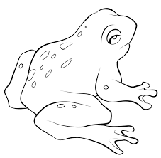 Small Picture Free frog coloring pages for kids ColoringStar