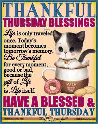 The Horse Mafia - Thankful Thursday Blessings   Facebook