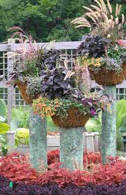 container garden design. Container Gardening Ideas Image Garden Design